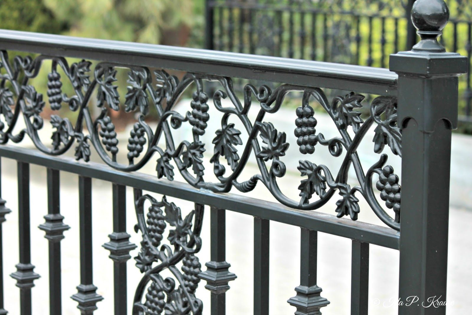 Wrought Iron Gates With Grapes Google Search With Images