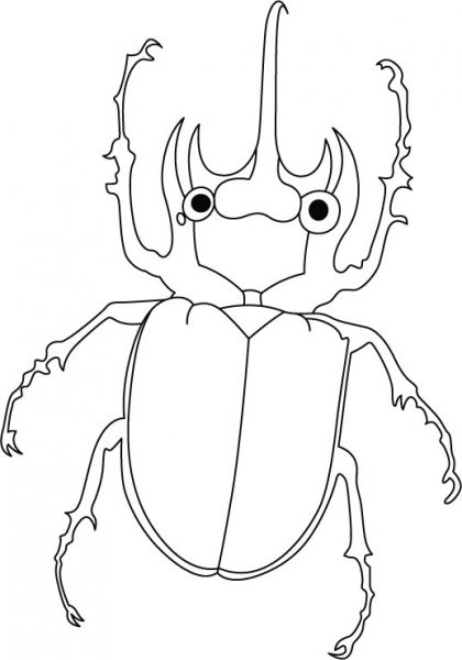 Beetle on the way coloring pages