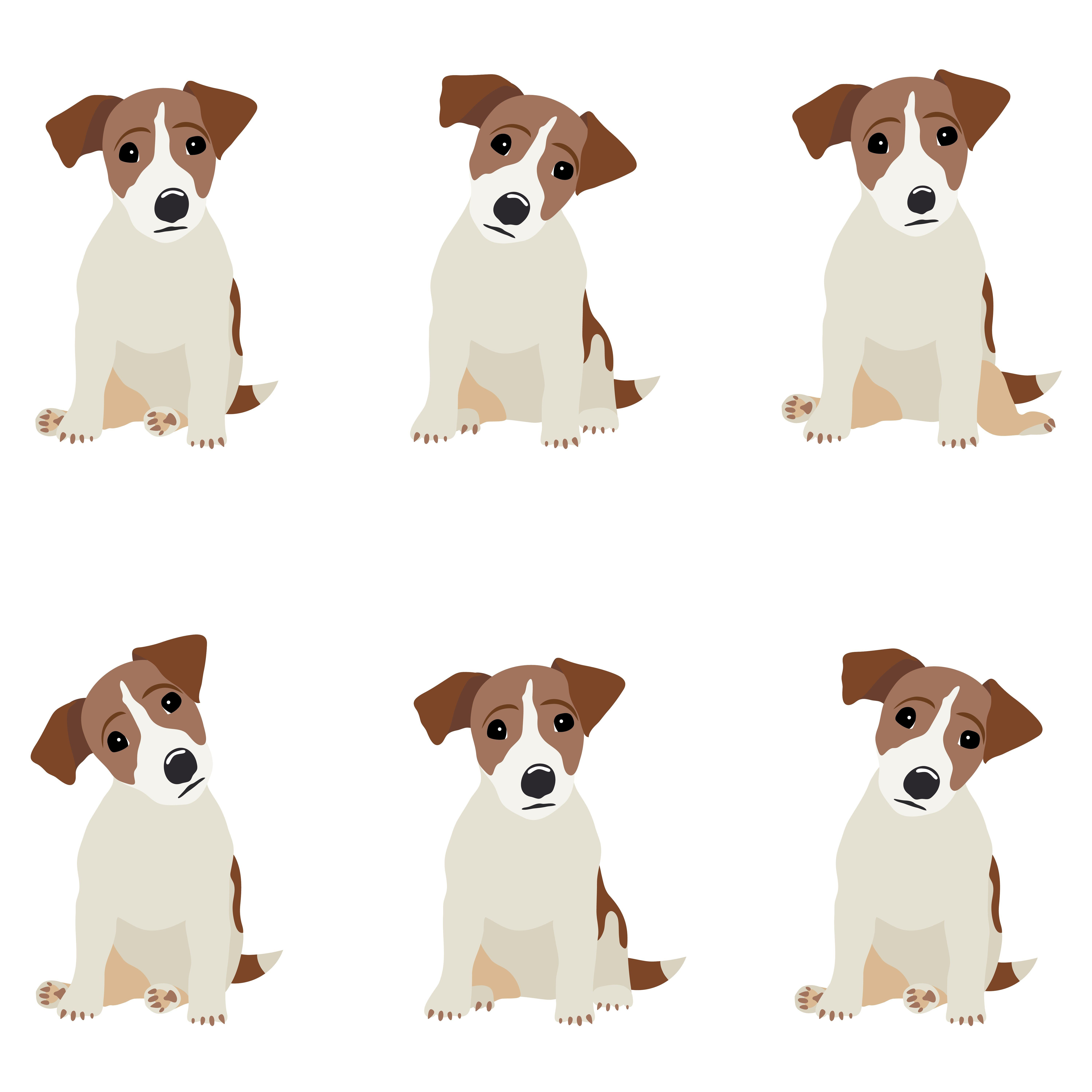 Jack Russell Terrier With Images Jack Russell Jack Russell