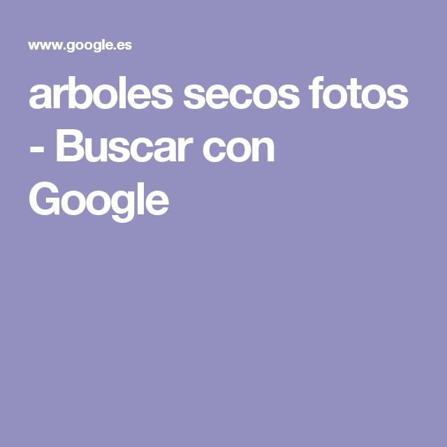 arboles secos fotos - Buscar con Google