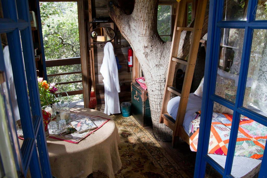 Check out this awesome listing on airbnb treehouse above