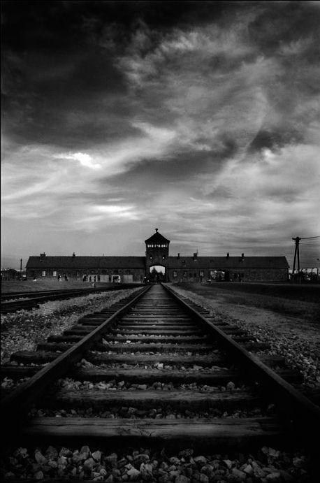 Auschwitz :(