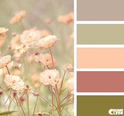 Color Palette | Colour Palette | Pinterest | Color pallets, Color ...