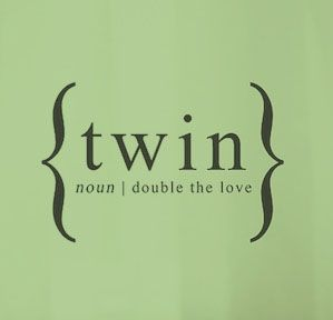 Twin Quotes Fair Twin Noun Wwwtwinsgiftcompanycouk  Twins And More  Pinterest
