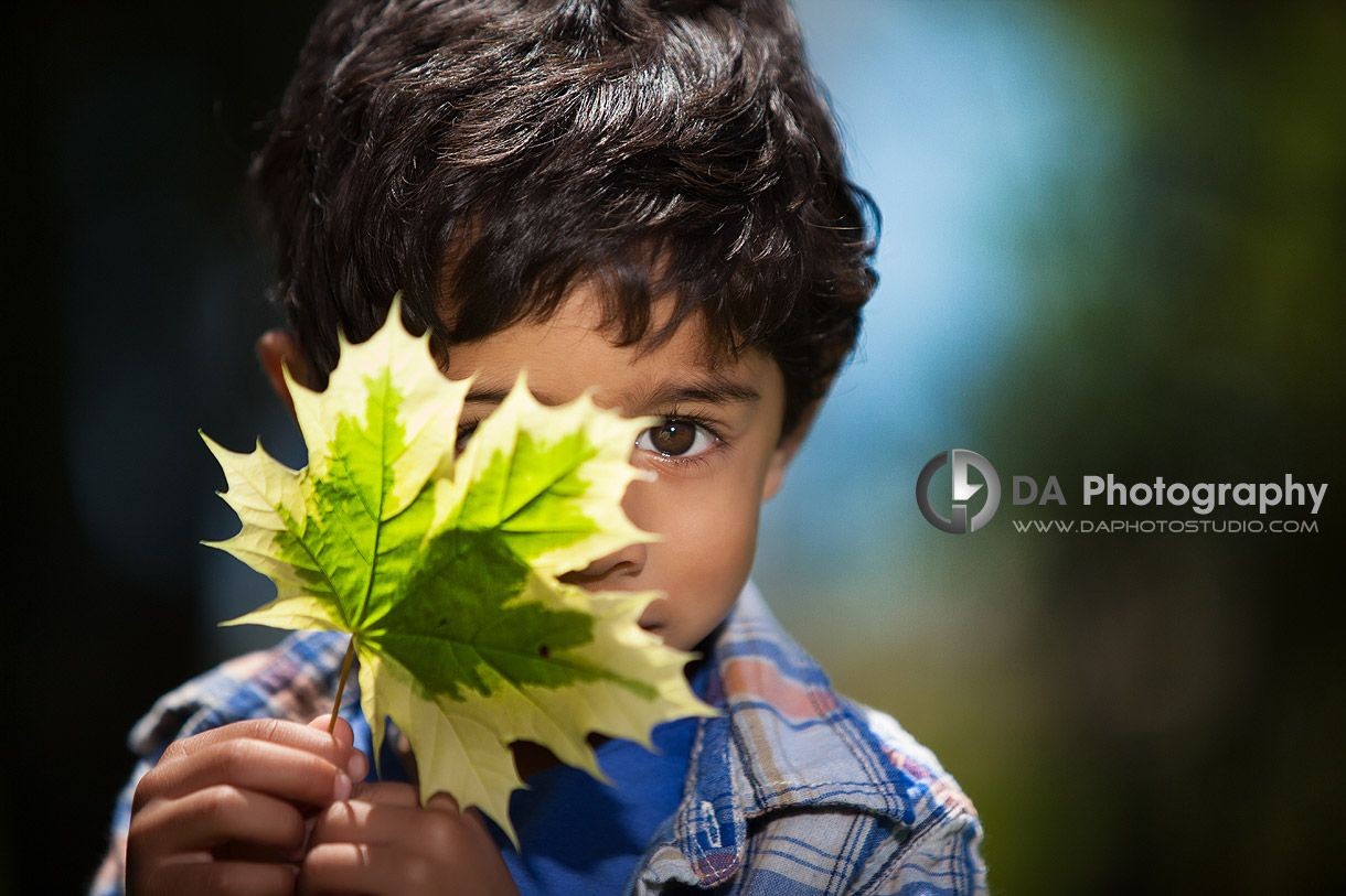 The hidden look behind the maple leaf - by DA Photography - Gairloch Gardens, ON - www.daphotostudio.com