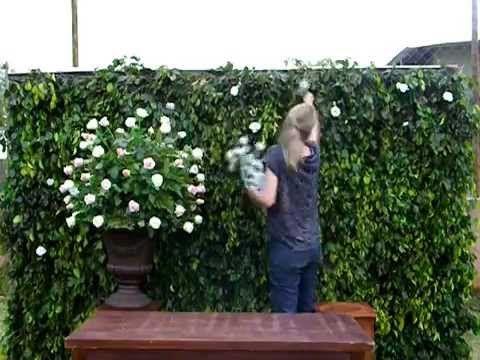 Arranjo Floral - Muro Ingles | Aranjo de flores e decoração ...