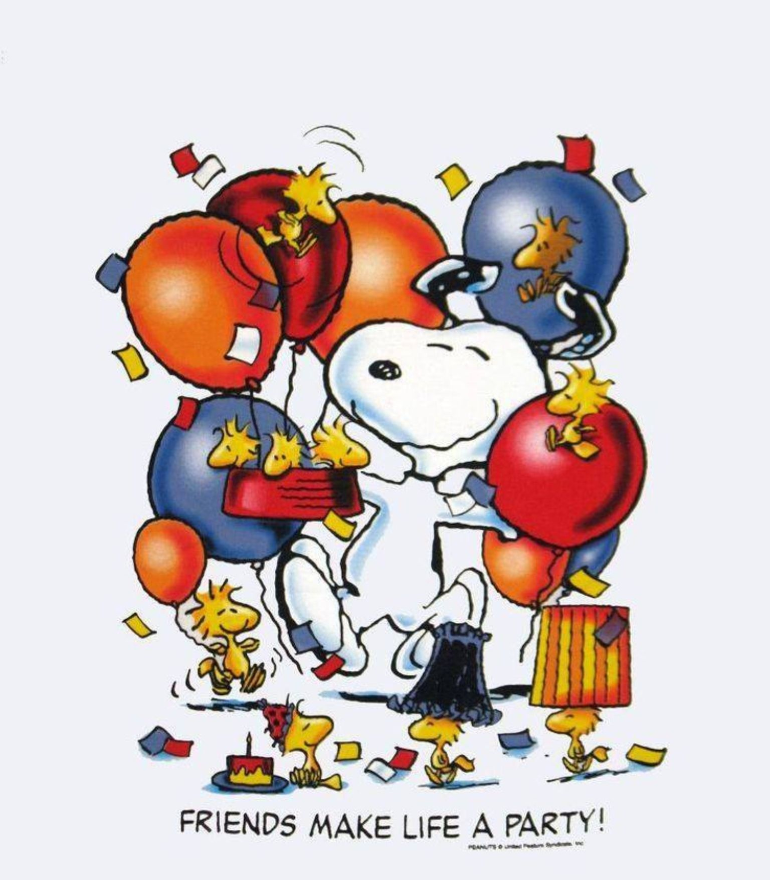 Snoopy & Woodstock-I Have This On A Shirt!