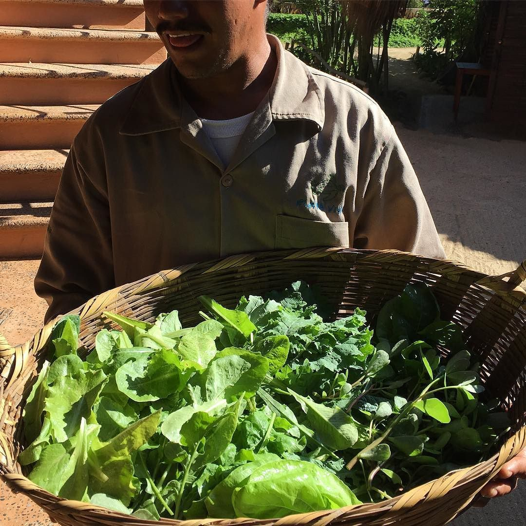 Farmfresh Vegetables