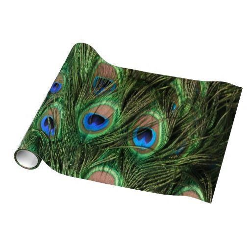 Peacock Feather gift wrap