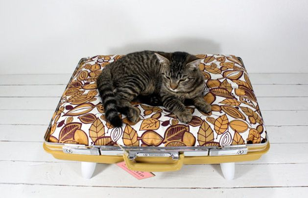 sweet pet bed made from a vintage suitcase