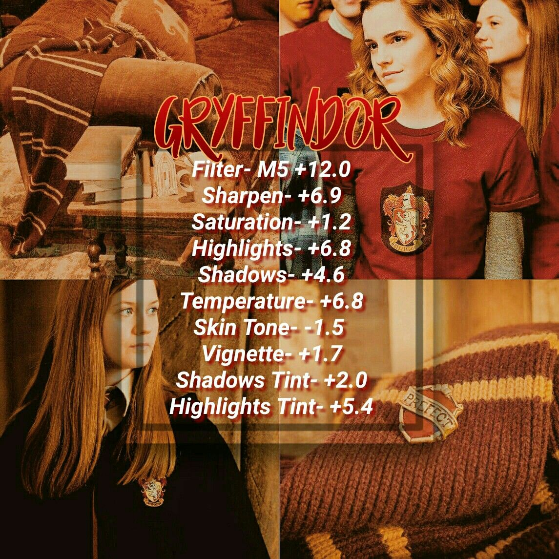 Gryffindor Filter Photo Editing Techniques Vsco Filter Instagram Photo Editing Vsco