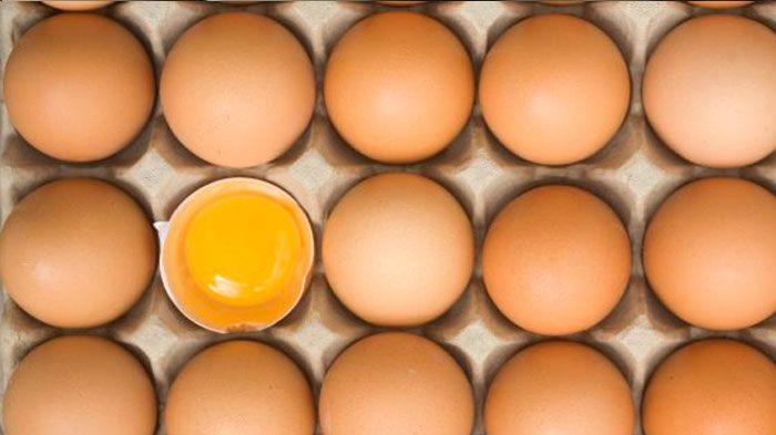 Egg carton dating