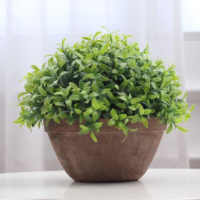 Risultati immagini per vasi con piante | il terrazzo in progress ...
