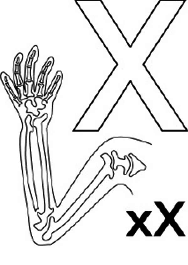 Big And Small Letter X For X Ray Coloring Page Bulk Color Coloring Pages Small Letters Lettering