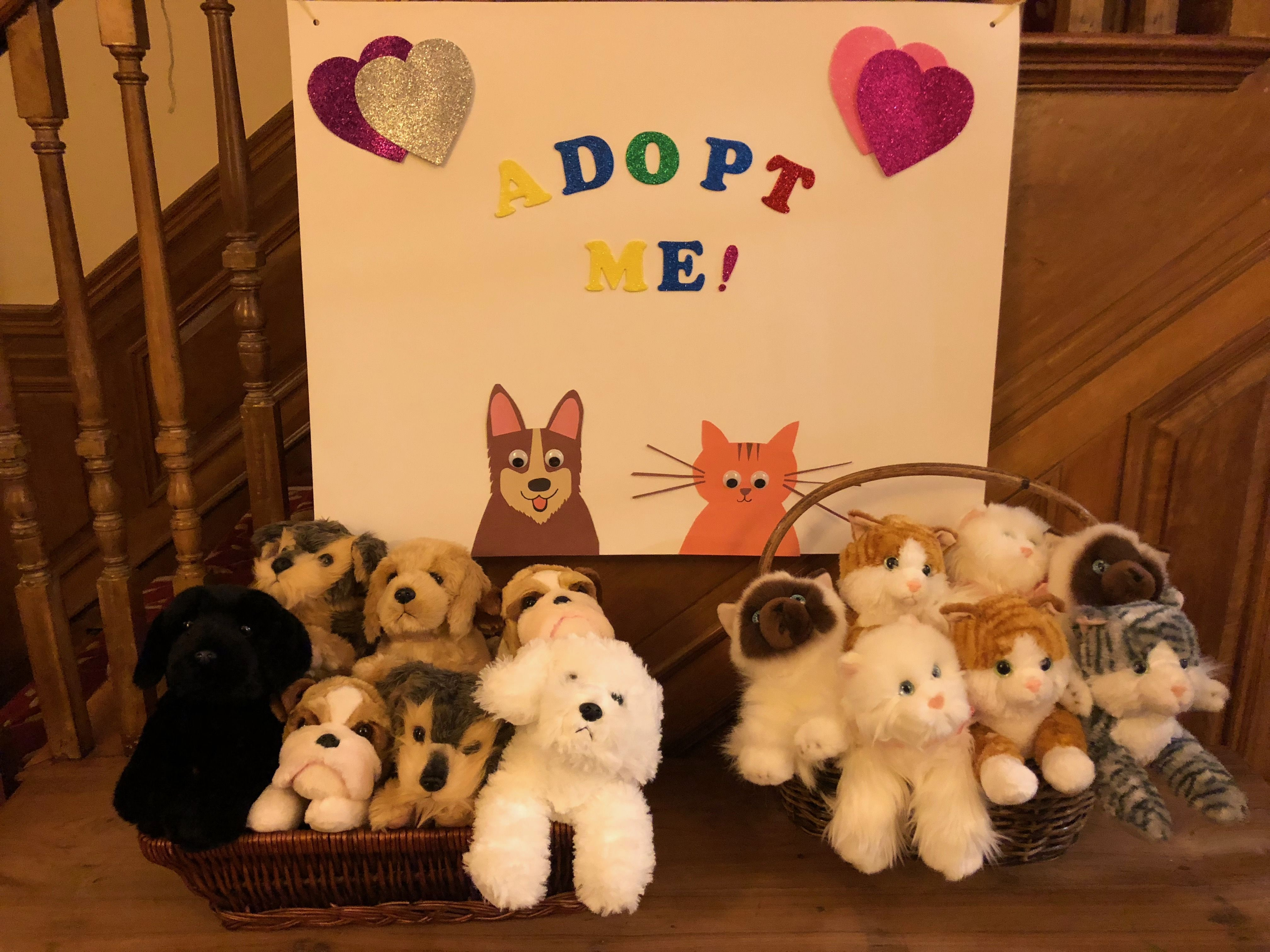 Puppy And Kitten Adoption Center At Kid S Birthday Party Kitten Adoption Kittens Dog Adoption