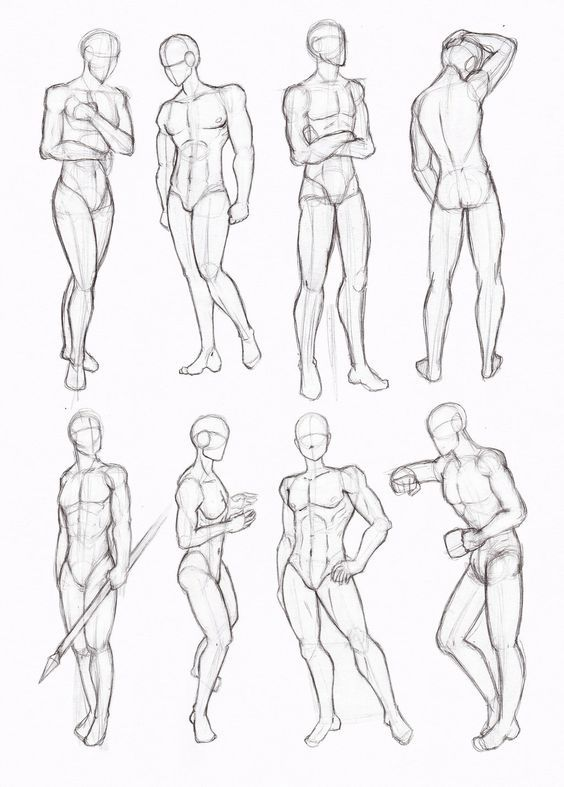 Https S Media Cache Ak0 Pinimg Com 564x 2c 93 97 2c9397ca010d5509f726fcf0349d116e Jpg Anatomy Sketches Drawing Body Poses Body Drawing