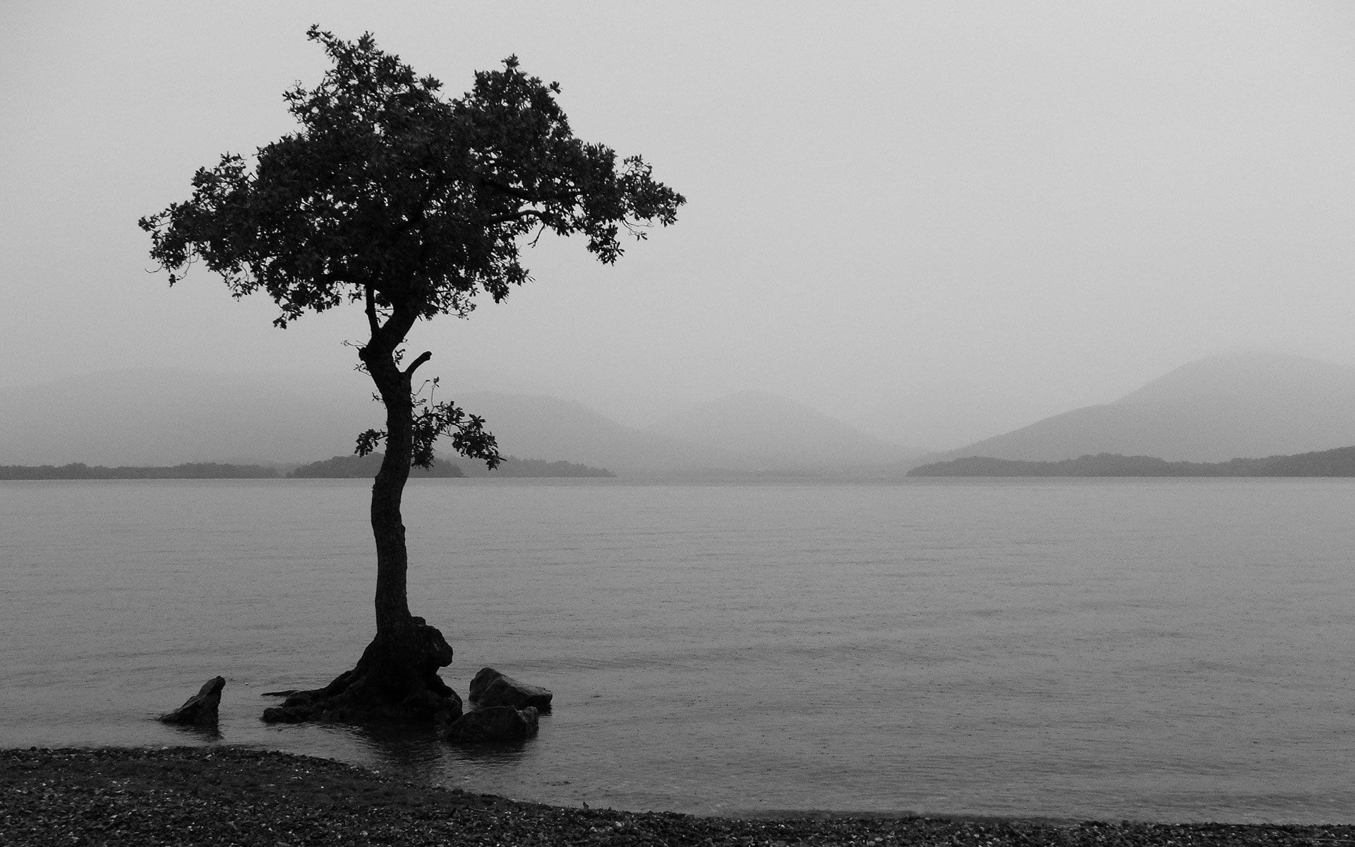 Black And White Black And White Landscape Black And White Wallpaper White Photography
