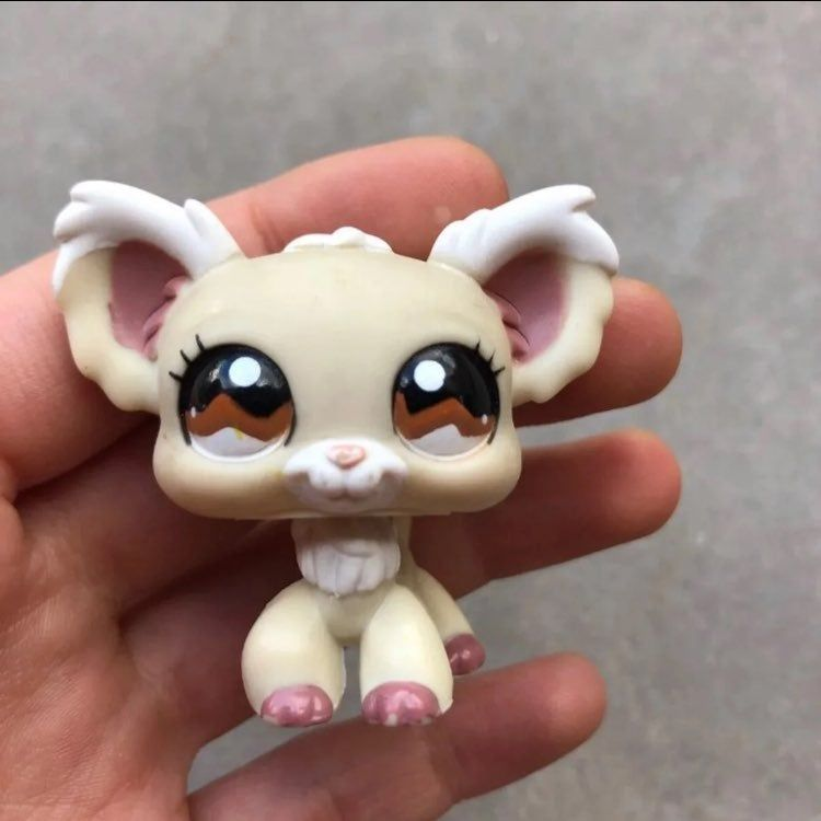 Adorable Cream And White Chihuahua Lps Toy 1099 In Great