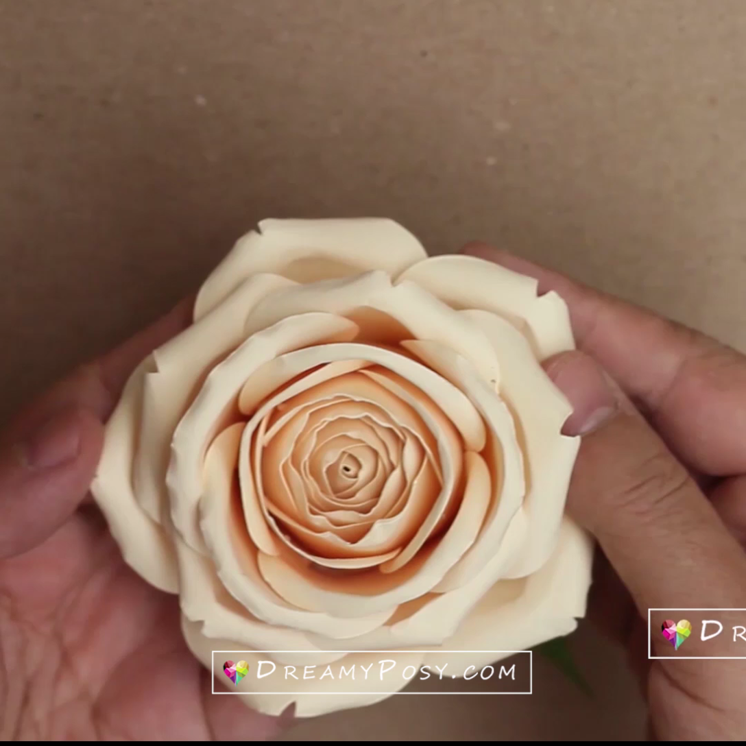 Paper rose tutorial Paper rose tutorial step by st