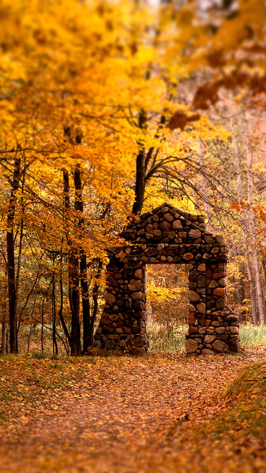 brick door autumn maple trees forest android wallpaper free download