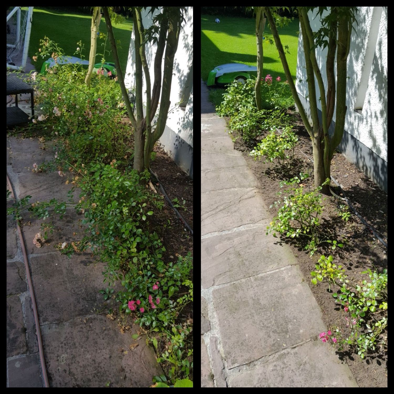 Saubere Wege Und Schne Aussichten Im Garten - Urlaub Zu