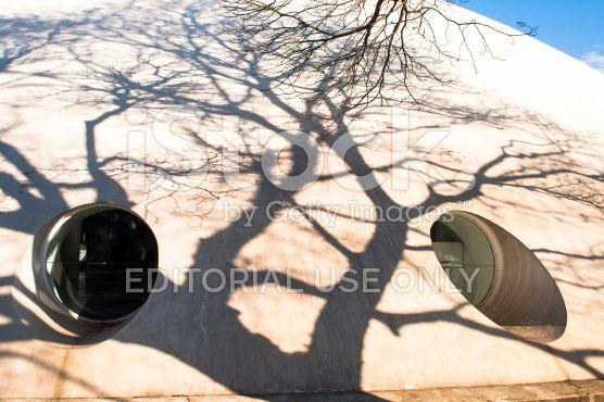 Oca no Parque do Ibirapuera - foto de acervo royalty-free