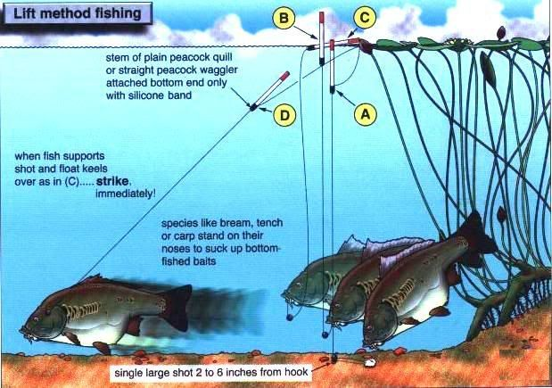 fishing methods Some fishing methods are decidedly unsustainable, but others aren't so bad, depending on the fishery in which they're used harmful and sometimes harmful methods (for superb illustrations of these, see the monterey bay aquarium's seafood watch site):.