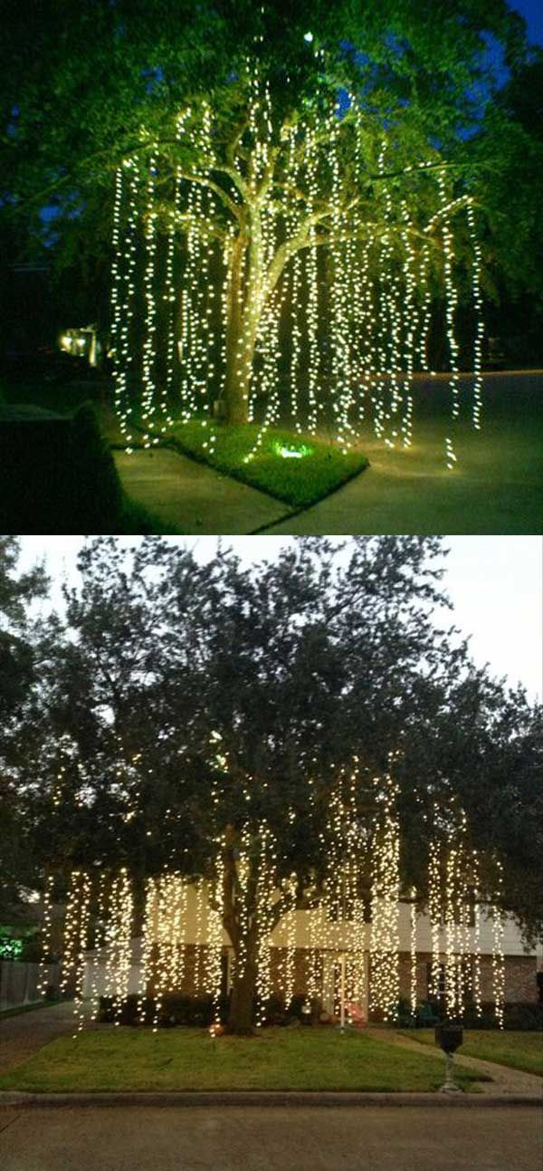 Seems like it's strands of lights hanging from the trees... Could be great  for the wedding, would make for some beautiful pictures! - Decorating Your Home With Elegant Christmas Decorations Wedding