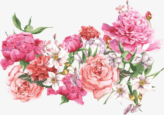 Pin by victoria stephans on flowers pinterest painted flowers visit mightylinksfo