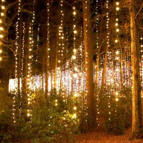 Outdoor solar powered fairy string lights house ideas pinterest outdoor solar powered fairy string lights aloadofball Image collections