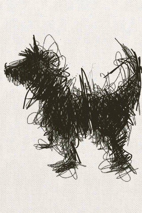 Sally Muir S A Dog A Day Year Long Pet Project Purplebone Dog Blog Scribble Art Art Inspiration Dog Art