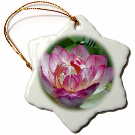 3dRose A Beautiful lotus flower, Snowflake Ornament, Porcelain, 3-inch - Walmart.com #lotusflower