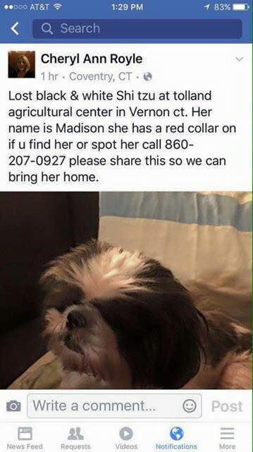 CT Lost Pets Page Liked · 1 hr · Edited ·    REUNITED! Found and home safe.  Lost in Vernon Vernon Animal Control