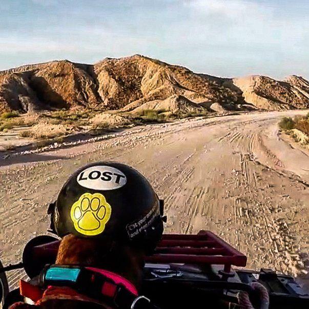 Big Bend desert Texas on a motorcycle @arawithspirit