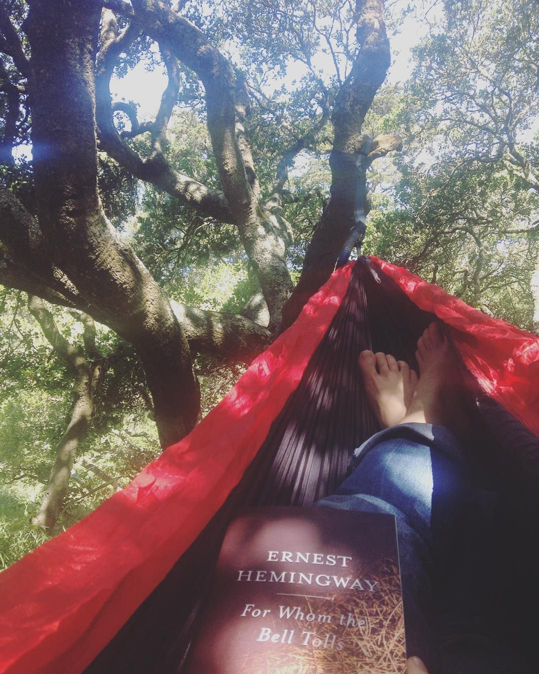 When one friend loans you a hammock and another introduces you to a beautiful bookstore what else are you supposed to do? #forthesakeofthestory #hammock #liveadventurously #alwaysroaming #neverstopexploring #optoutside by mckenzi.jo