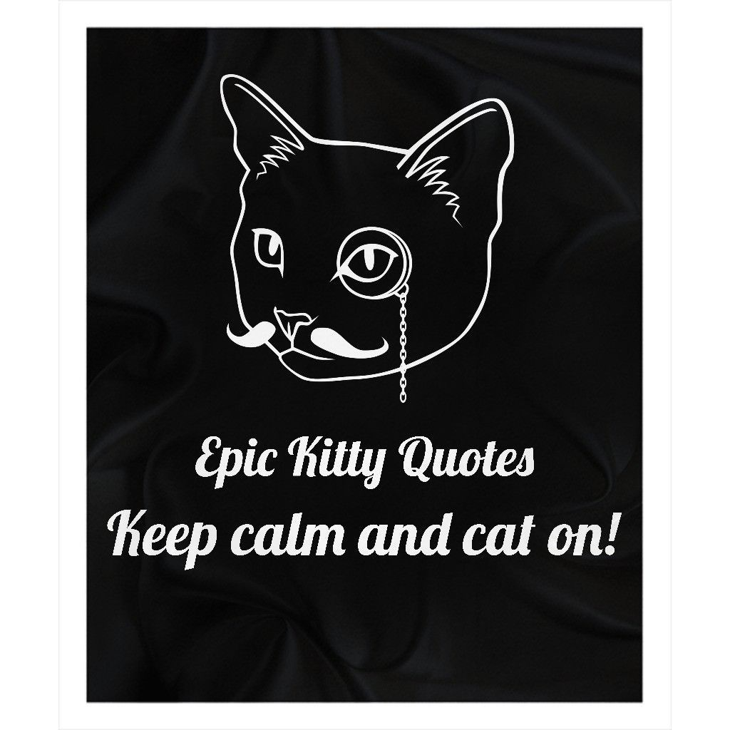 Looking for the purrfect gift? Check out Keep calm and cat... at http://www.epickittyquotes.com/products/keep-calm-and-cat-on-1?utm_campaign=social_autopilot&utm_source=pin&utm_medium=pin