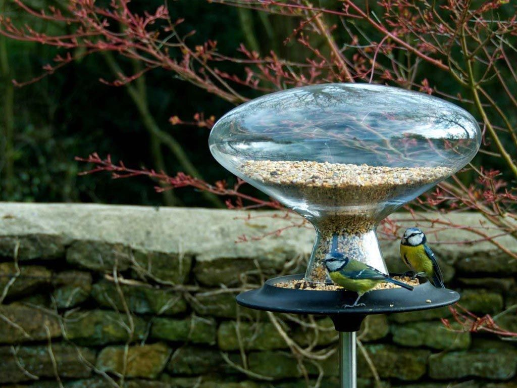 stone bird baths homebase bird baths pinterest stone bird baths
