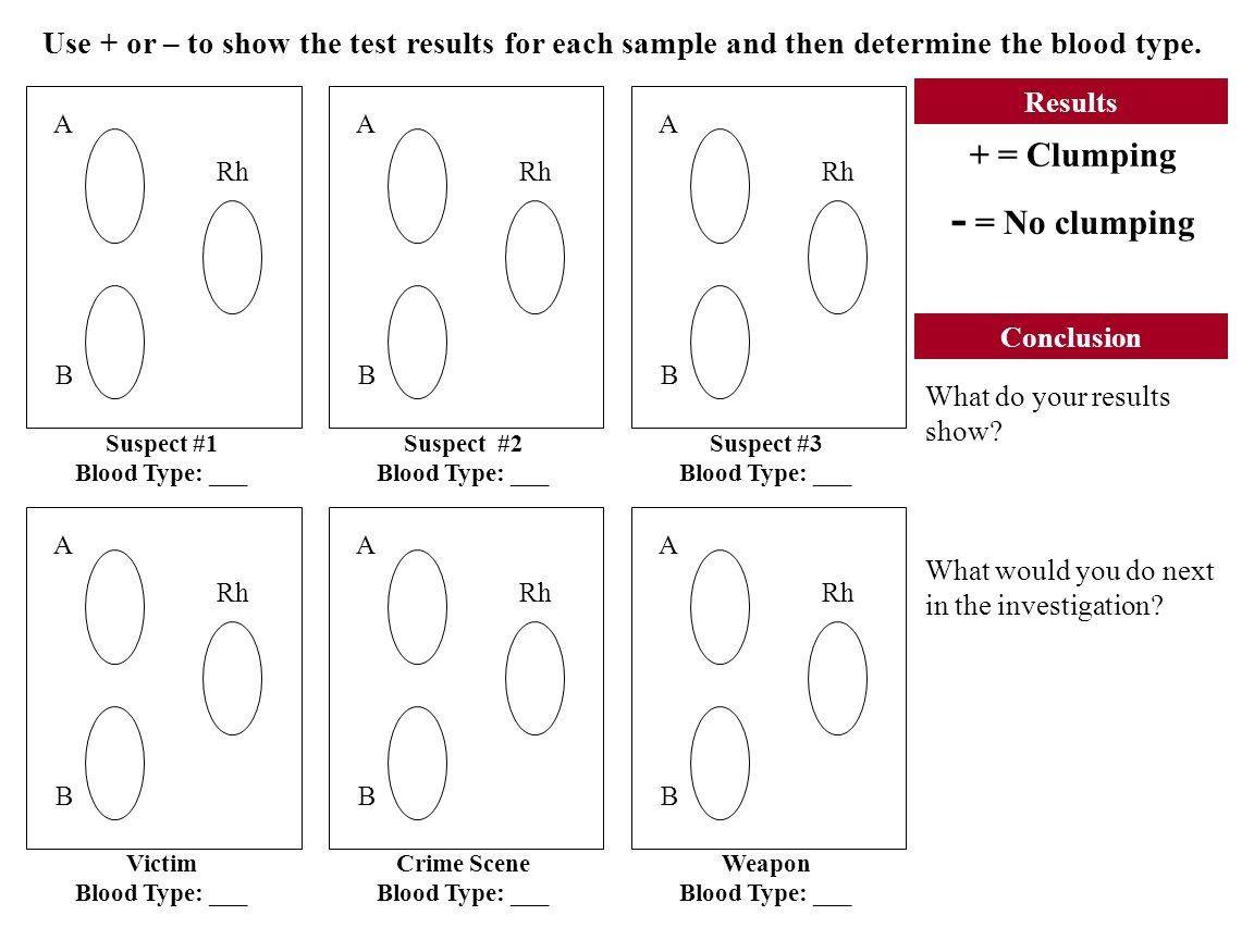Blood Typing Worksheet