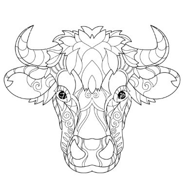 Hand Drawn Doodle Outline Cow Head Vector Image On How To Draw