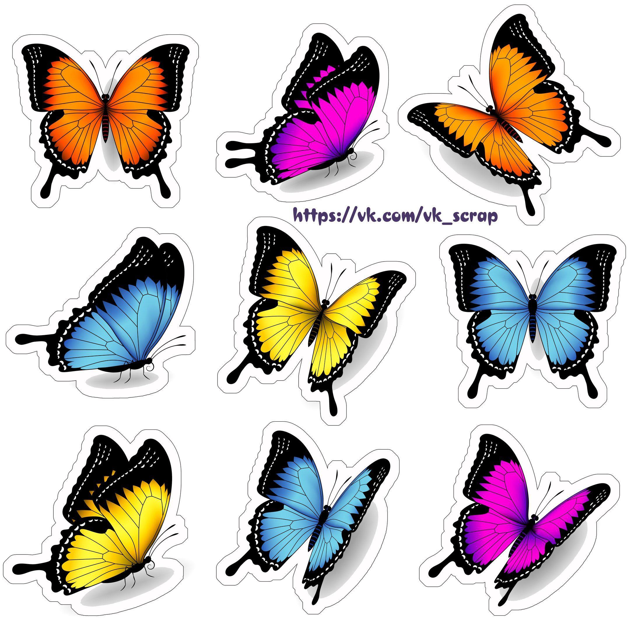 высечки с бабочками Bolo Jardim Das Borboletas Borboletas