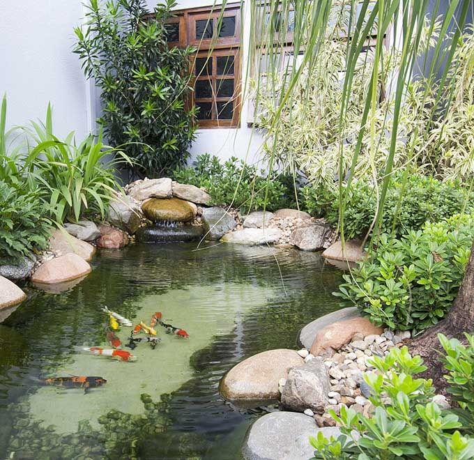 lago ornamental 02 jardins pinterest lagos