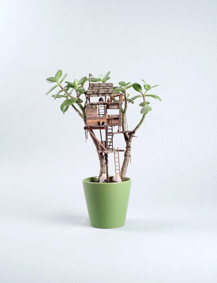 Tiny Huts in Houseplants