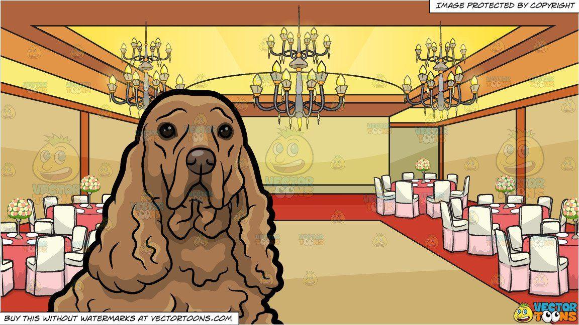 A Cocker Spaniel Relaxing On The Floor And A Ballroom Set Up For A Wedding Background Wedding Background Orange Walls White Chandelier