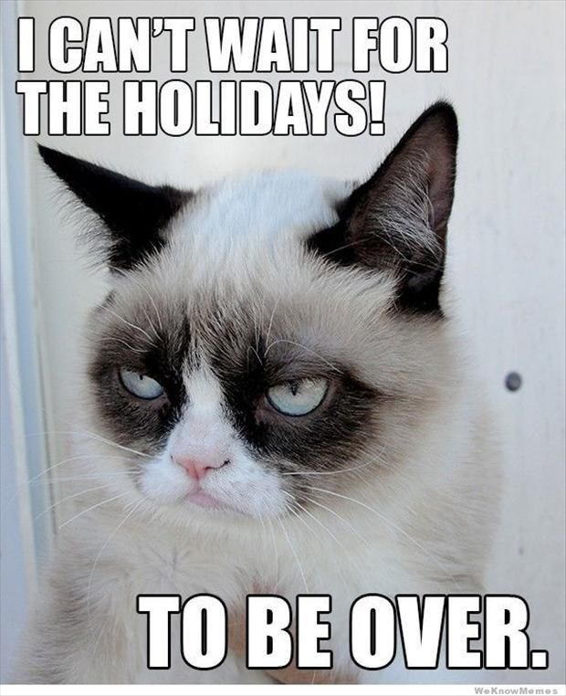 Grumpy Cat Christmas Grumpy Christmas Grumpy Cat Holidays For More Funny Quotes And Hilarious Funny Grumpy Cat Memes Grumpy Cat Humor Grumpy Cat Christmas