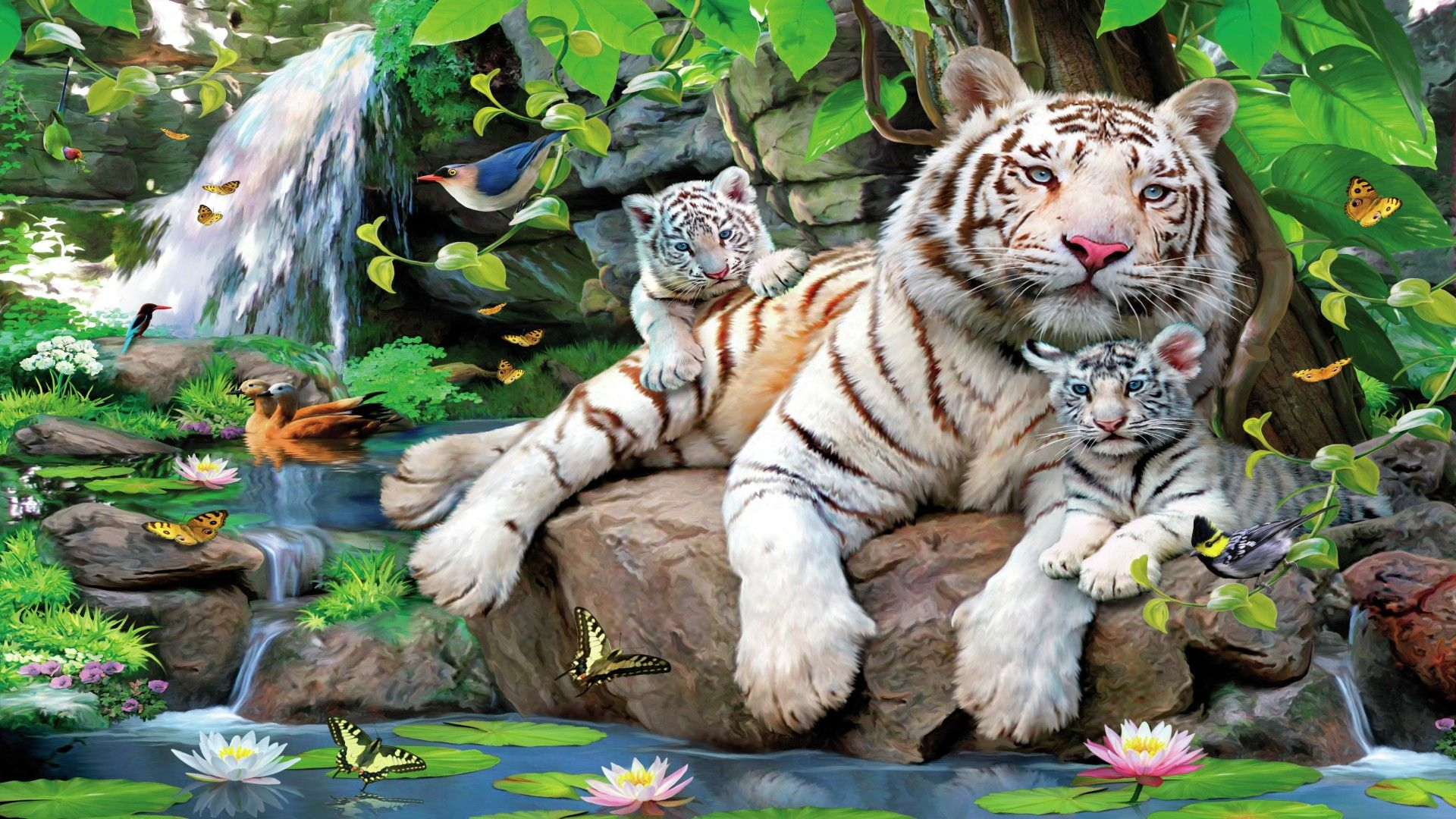 Royal bengal tiger is a great wallpaper for your computer desktop and - White Tiger With Cubs Hd Hd Desktop Background Wallpaper Free