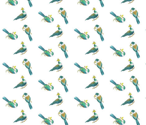 Tui and Kowhai fabric by rebeccatiana on Spoonflower - custom fabric