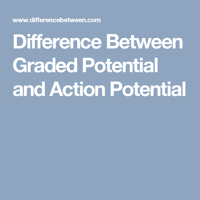Difference Between Graded Potential and Action Potential | Anatomy ...