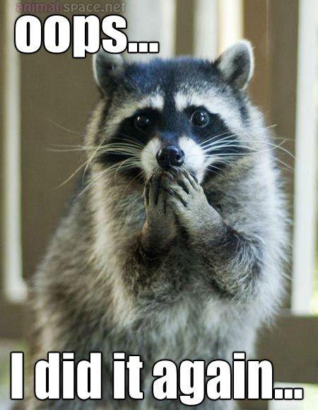 #britneyspears #raccoon