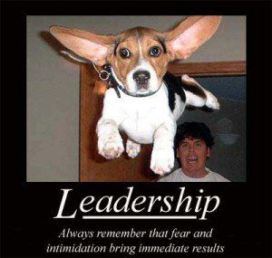 Funny Inspirational Leadership Quotes 1 Leadership Quotes Leadership Quotes Inspirational Leadership