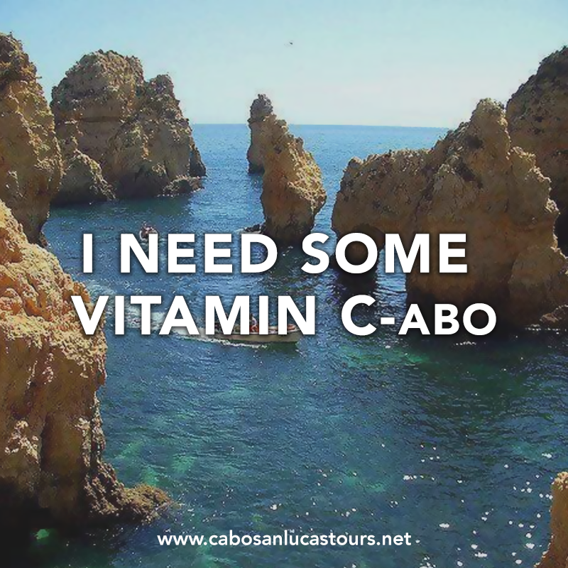 I Need some Vitamin C-abo! Cabo San Lucas quotes, tours